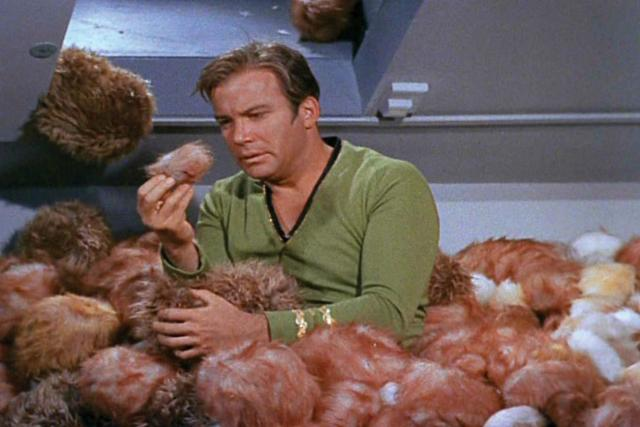 star-trek-the-trouble-with-tribbles-william-shatner-captain-kirk
